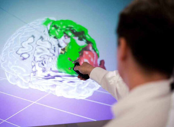 Schematic illustration - JARA BRAIN brain research in collaboration with FZ Jülich