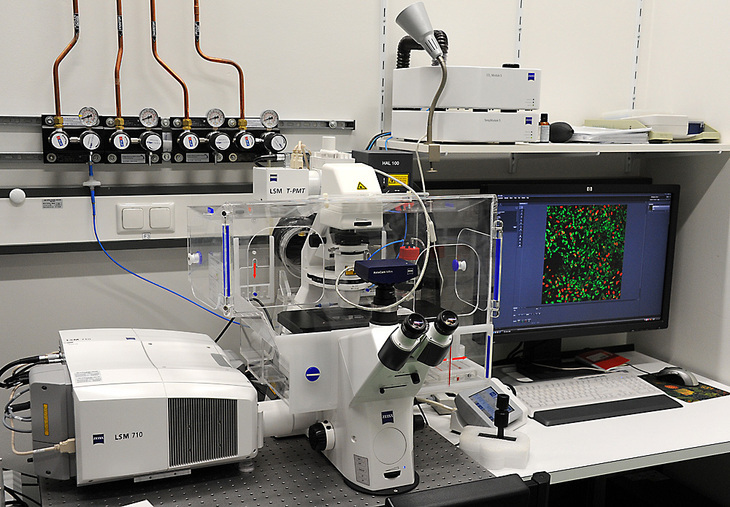 Equipment of the Confocal Microscopy Facility